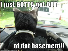 I just GOTTA get OUT  of dat basement!!