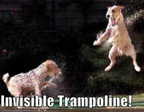 Invisible Trampoline!
