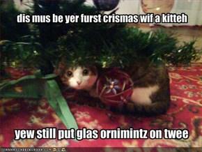 dis mus be yer furst crismas wif a kitteh