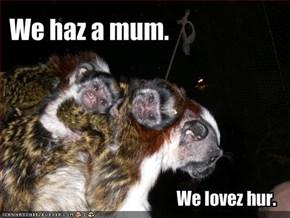 We haz a mum.