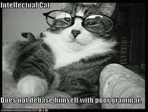 Intellectual Cat  Does not debase himself with poor grammar.