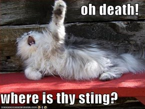 oh death!  where is thy sting?