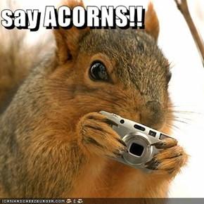 say ACORNS!!