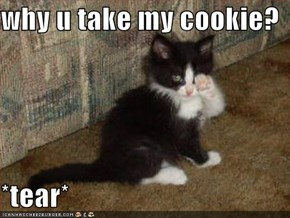 why u take my cookie?  *tear*
