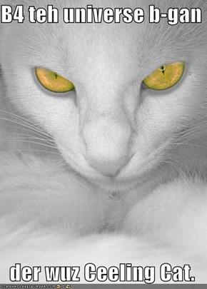 B4 teh universe b-gan  der wuz Ceeling Cat.