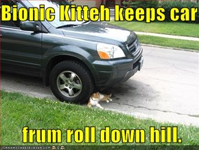 Bionic Kitteh keeps car      frum roll down hill.
