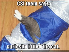 CSI teem sayz:   curiosity killed the cat.