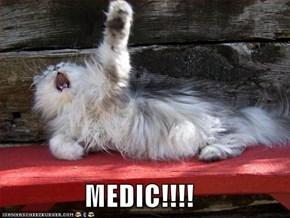 MEDIC!!!!