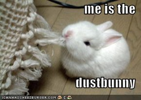 me is the  dustbunny