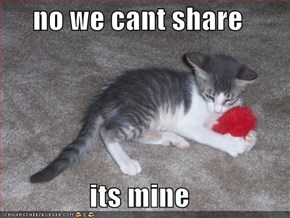 no we cant share  its mine