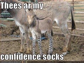 Thees ar my  confidence socks