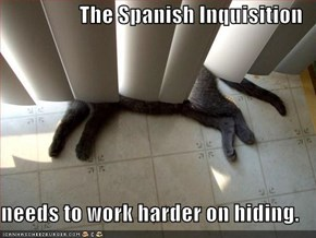 The Spanish Inquisition  needs to work harder on hiding.