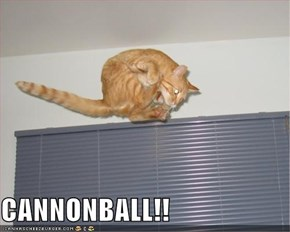CANNONBALL!!