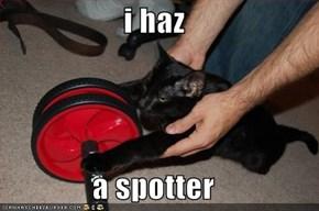i haz  a spotter