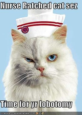 Nurse Ratched cat sez  Time for yr lobotomy