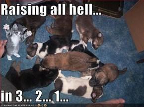 Raising all hell...  in 3... 2... 1...