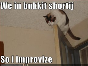 We in bukkit shortij  So i improvize