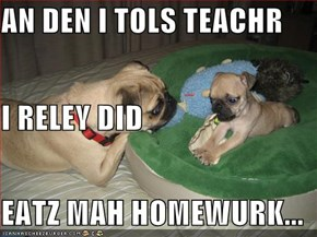 AN DEN I TOLS TEACHR I RELEY DID EATZ MAH HOMEWURK...