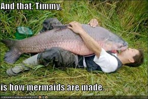 And that, Timmy,  is how mermaids are made.
