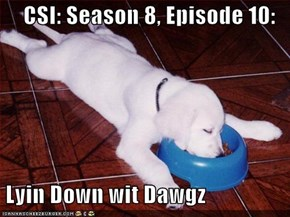 CSI: Season 8, Episode 10:   Lyin Down wit Dawgz