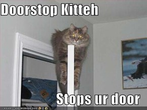 Doorstop Kitteh  Stops ur door