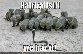Hairballs!!!  we haz it!