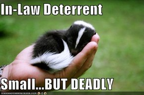 In-Law Deterrent  Small...BUT DEADLY