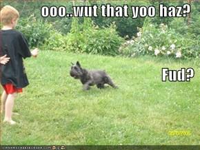 ooo..wut that yoo haz? Fud?