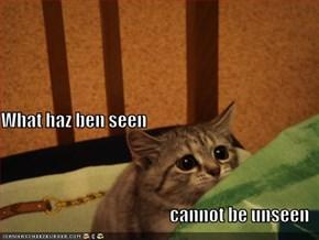 What haz ben seen cannot be unseen