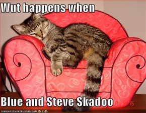 Wut happens when  Blue and Steve Skadoo