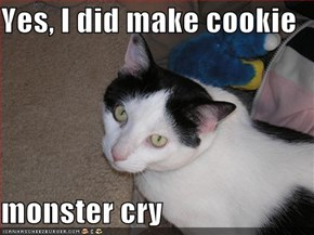 Yes, I did make cookie   monster cry