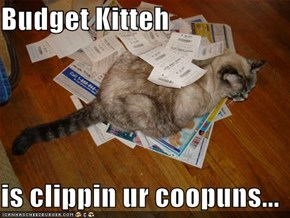 Budget Kitteh  is clippin ur coopuns...