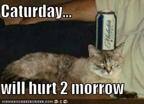 Caturday...  will hurt 2 morrow