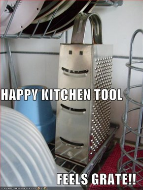HAPPY KITCHEN TOOL FEELS GRATE!!