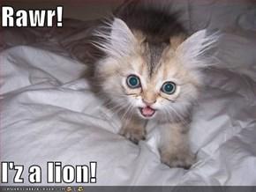 Rawr!  I'z a lion!