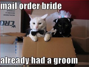 mail order bride  already had a groom