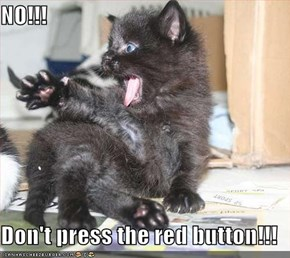 NO!!!  Don't press the red button!!!