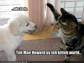 Teh Moe Howard uv teh kitteh wurld...