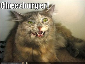 Cheezburger!
