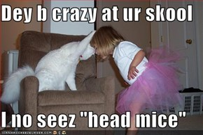 "Dey b crazy at ur skool  I no seez ""head mice"""