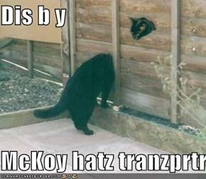 Dis b y   McKoy hatz tranzprtr
