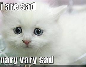 i are sad  vary vary sad