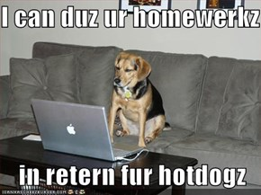 I can duz ur homewerkz  in retern fur hotdogz