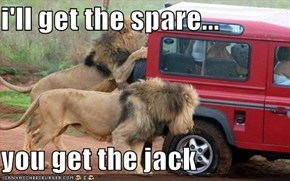 i'll get the spare...  you get the jack
