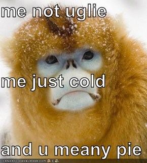 me not uglie me just cold and u meany pie