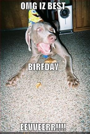 OMG IZ BEST  BIRFDAY EEVVEERR!!!!