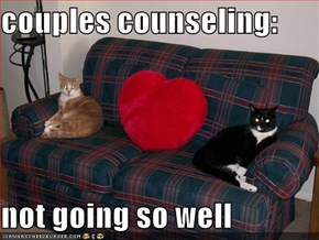 couples counseling:  not going so well