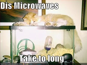 Dis Microwaves  Take to long
