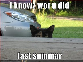 I knowz wot u did  last summar