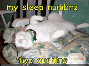my sleep numbrz  two cushins